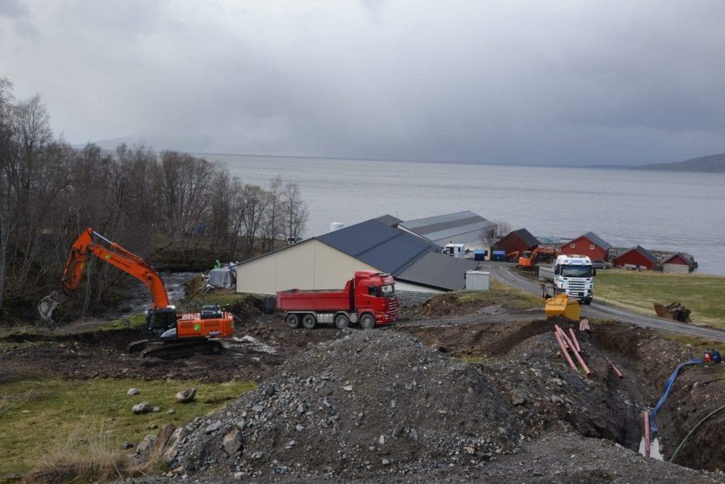 Utgravinga av tomta til Hjelvik Matfisk er i full gang